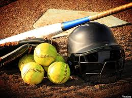 Wyoming State Softball Series