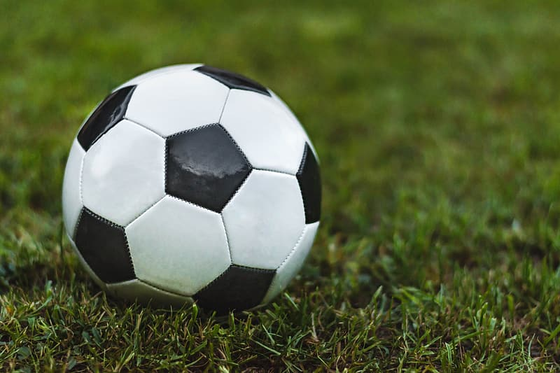 Boys Open Soccer, Campbell County High School